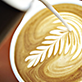 Wellington Coffee Barista Training Dorset